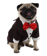 Dog Tuxedo (Party Tuxedo for Dogs (brown color))