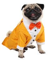 Dog Tuxedo (Party Tuxedo for Dogs (yellow))