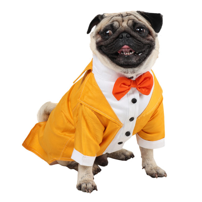 Dog Tuxedo (Party Tuxedo for Dogs (yellow))