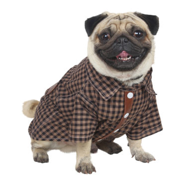 Douge Couture Pet Clothes, cotton brown check 1