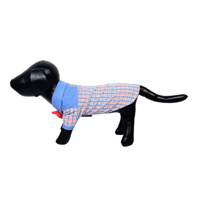 Douge Couture multi color SMART check shirt with red bow