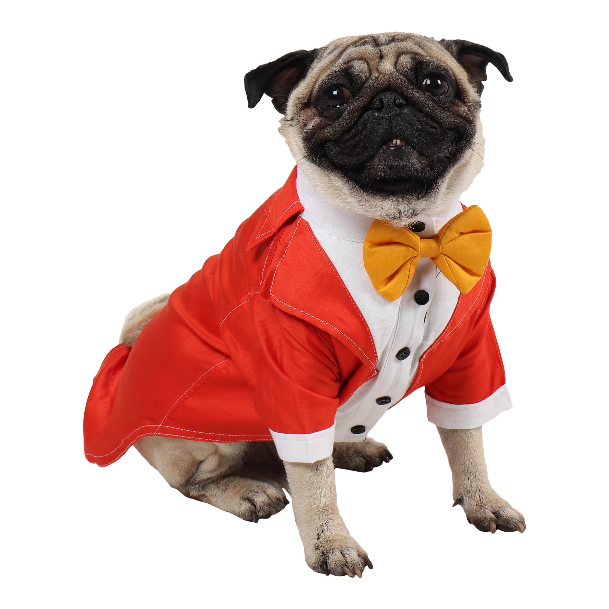 Dog Tuxedo (Party Tuxedo for Dogs( orange color))