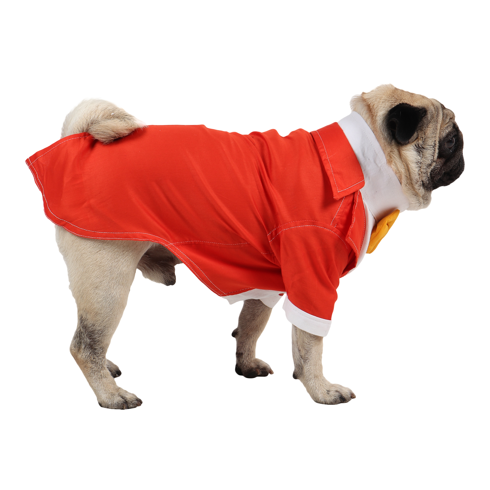 DOUGE COUTURE Party Tuxedo for Dogs( orange colour)