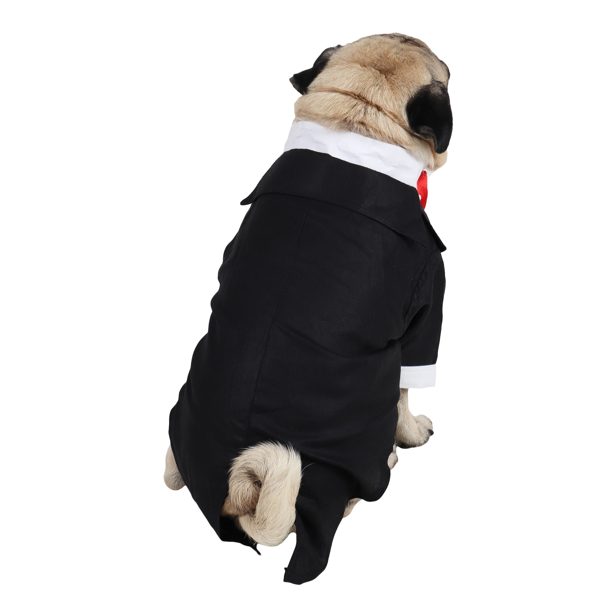 DOUGE COUTURE Party Tuxedo for Dogs (black colour)