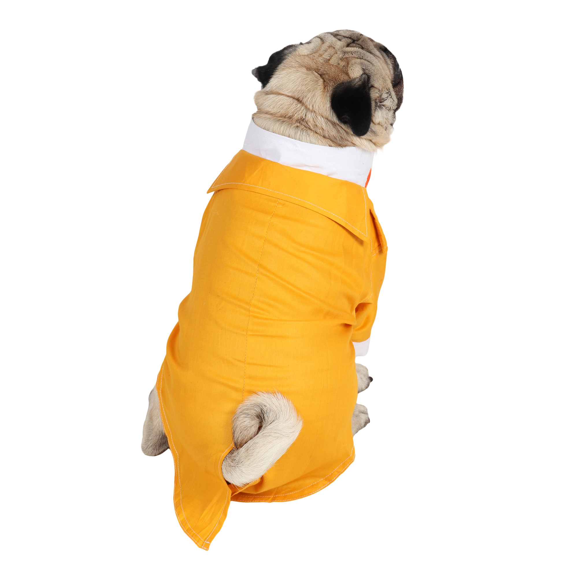 DOUGE COUTURE Party Tuxedo for Dogs (yellow)