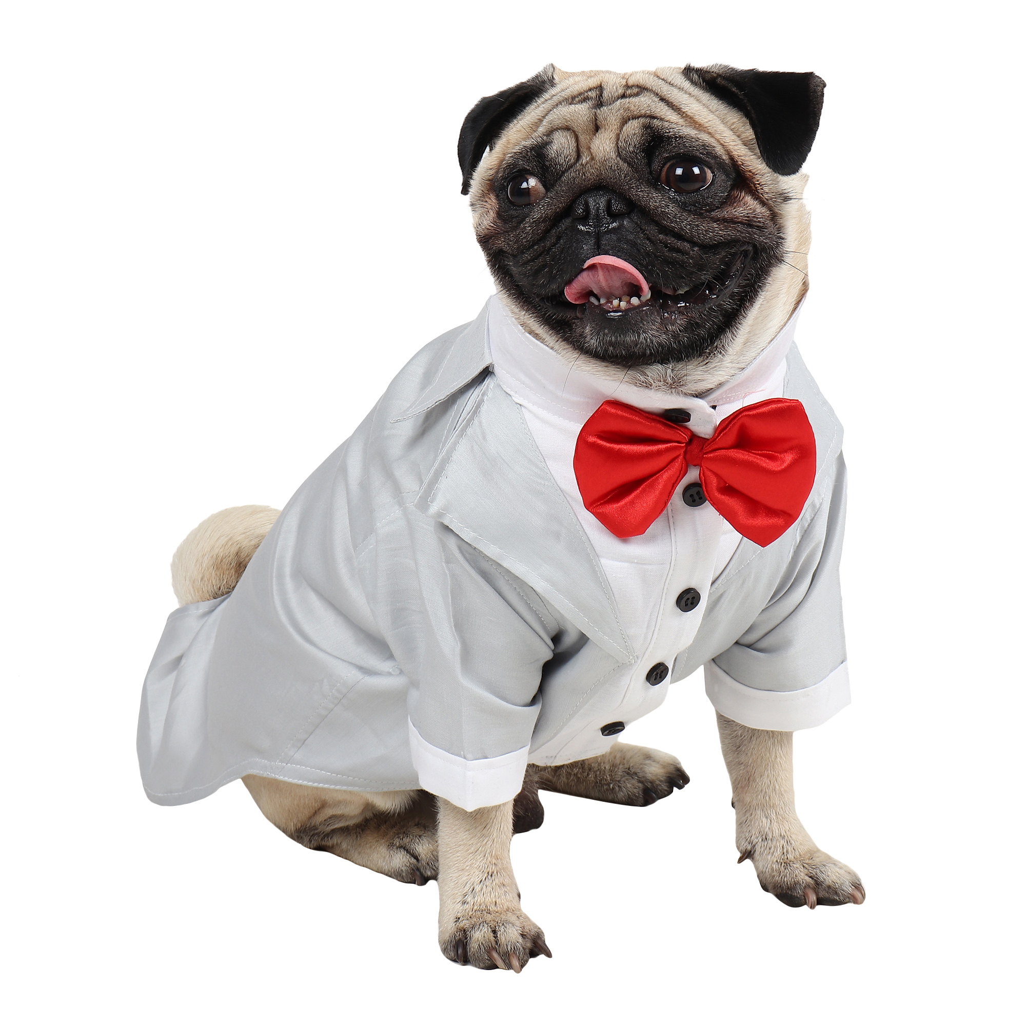 Dog Tuxedo (Party Tuxedo for Dogs (grey))