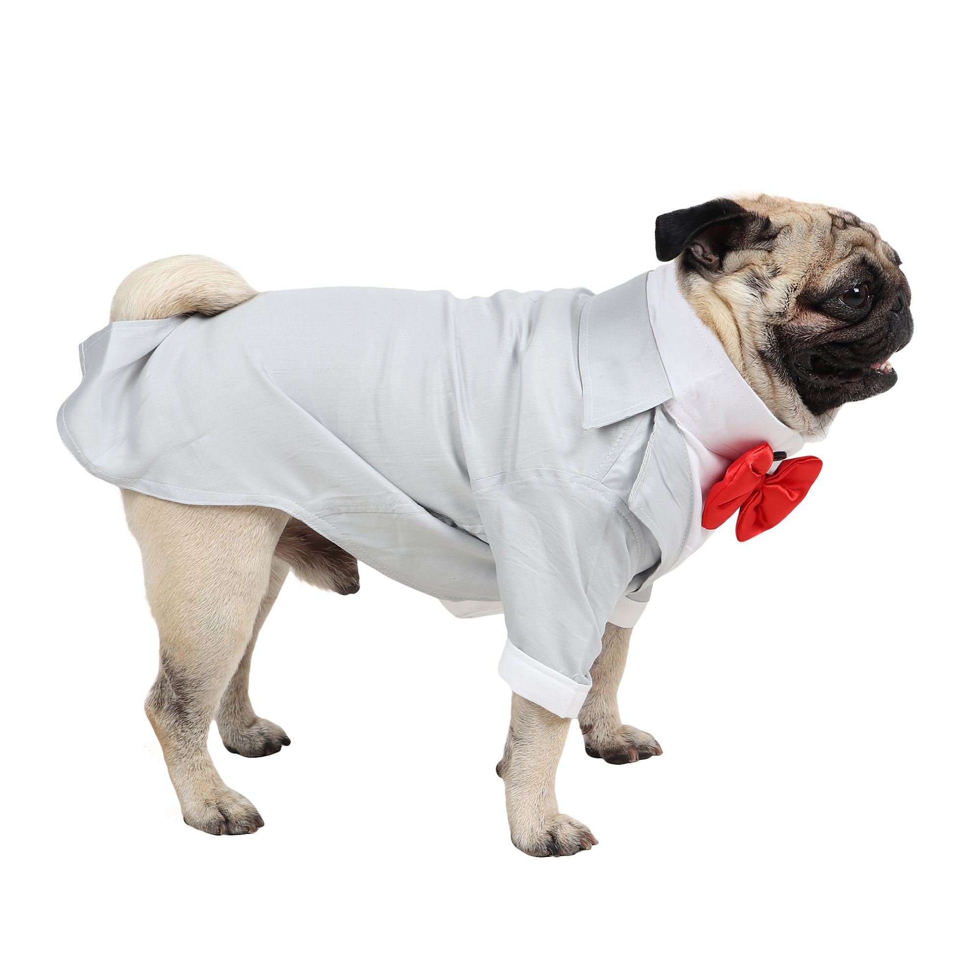 DOUGE COUTURE Party Tuxedo for Dogs (grey)