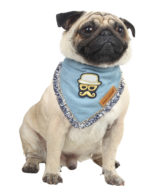 Douge couture cool bandana, with smart patch for dog/cat