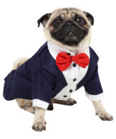 Dog Tuxedo (Party Tuxedo for Dogs (navy blue))