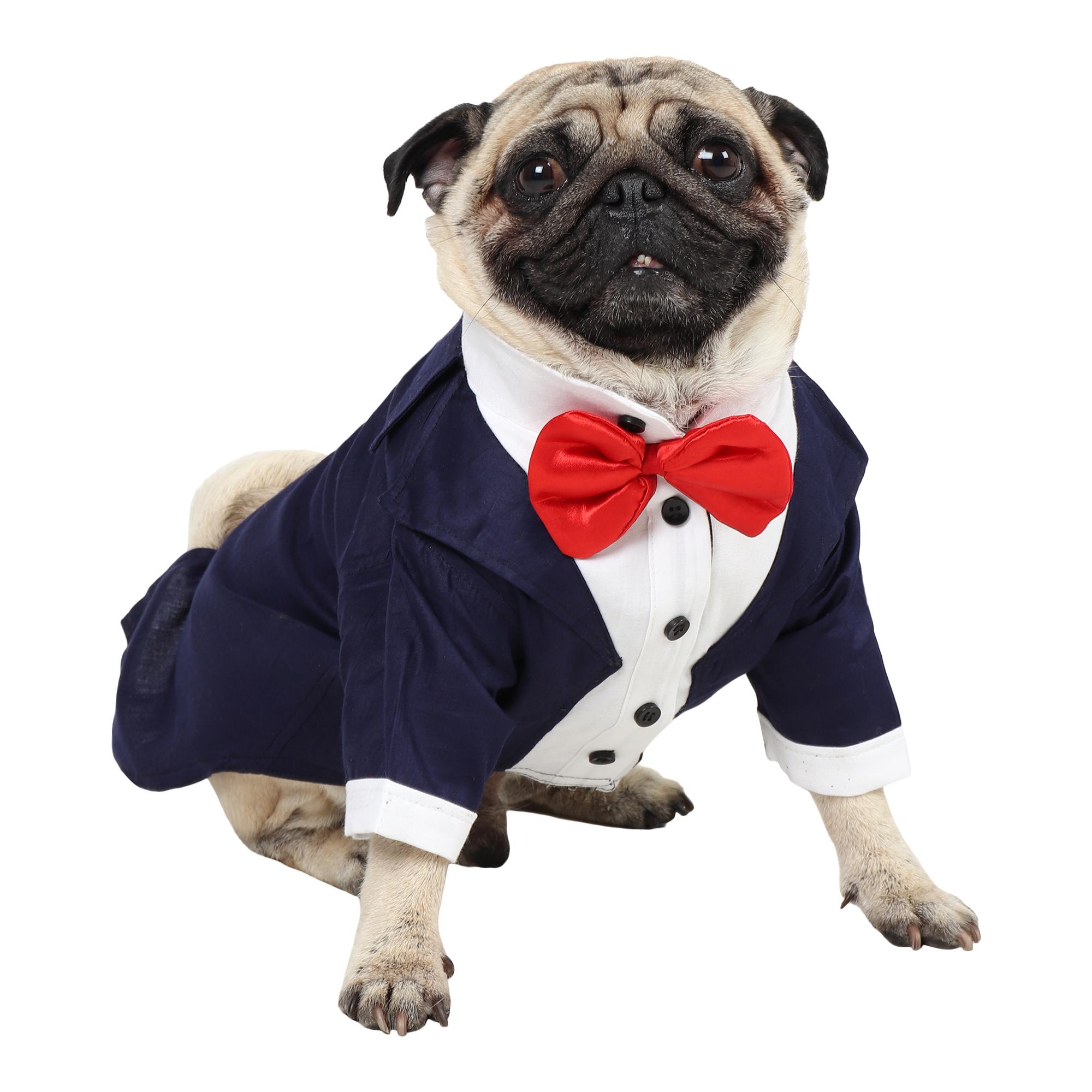 Dog Tuxedo (Party Tuxedo for Dogs (navy blue))