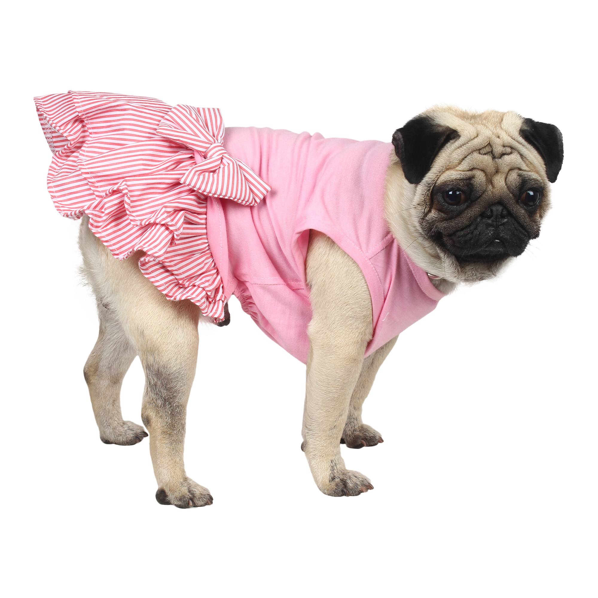 douge coutre female pet dog/cat dress red stripe 1