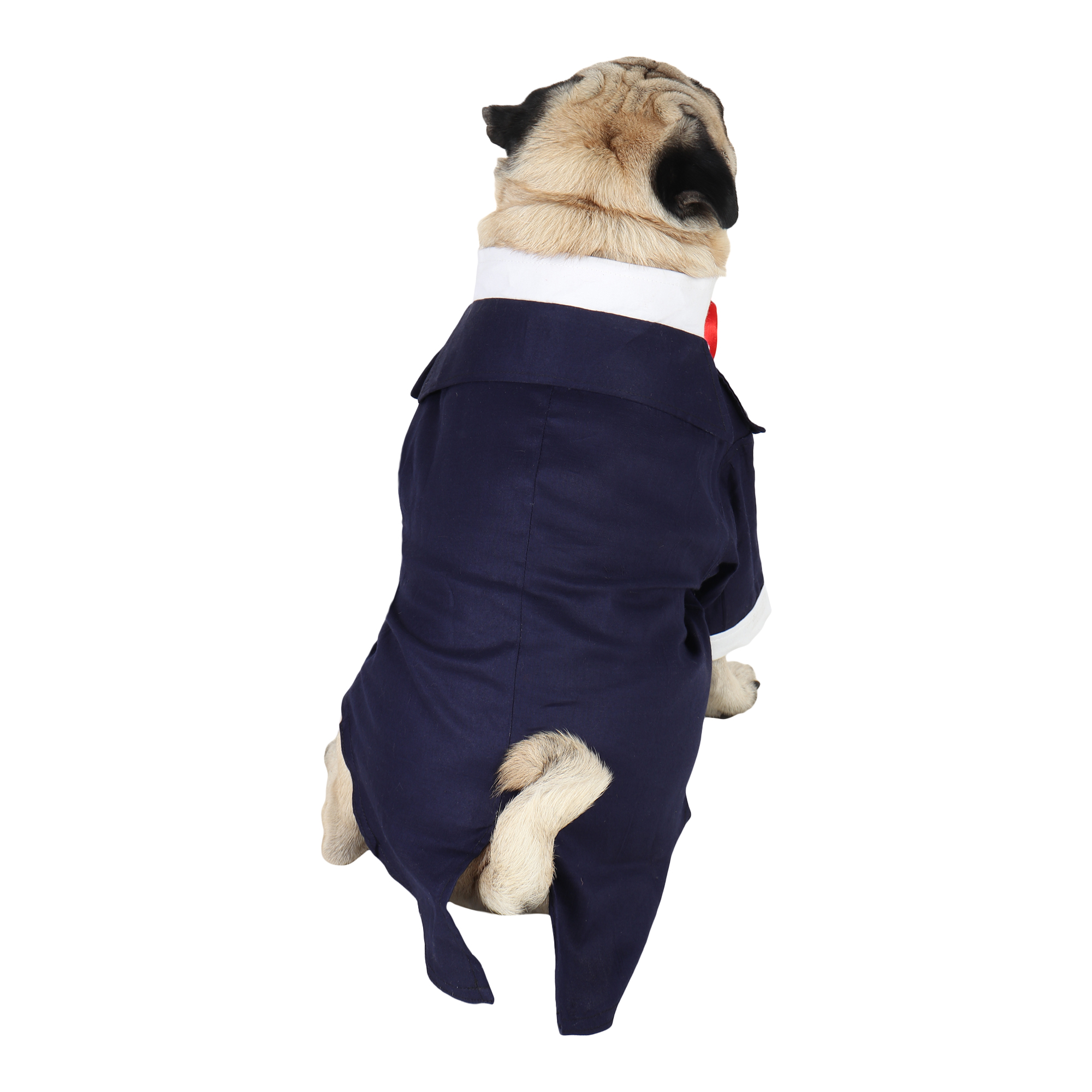DOUGE COUTURE Party Tuxedo for Dogs (navy blue)