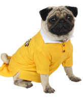douge couture yellow color polot-shirt with patch
