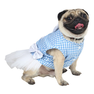 Douge Coutre blue check ultra cute dog/cat dress 1
