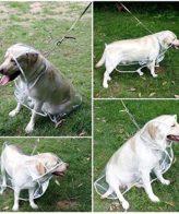 Dog Raincoat Transparent Printed