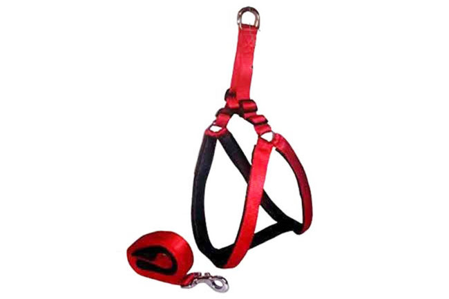 Nylon Soft Padded Body Set-Leash & Harness (Red,Black, Small, 0.75) douge couture
