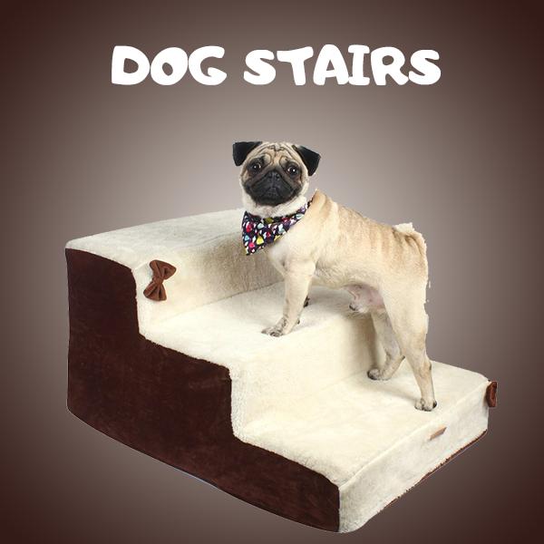 Dog Ramp & Stairs