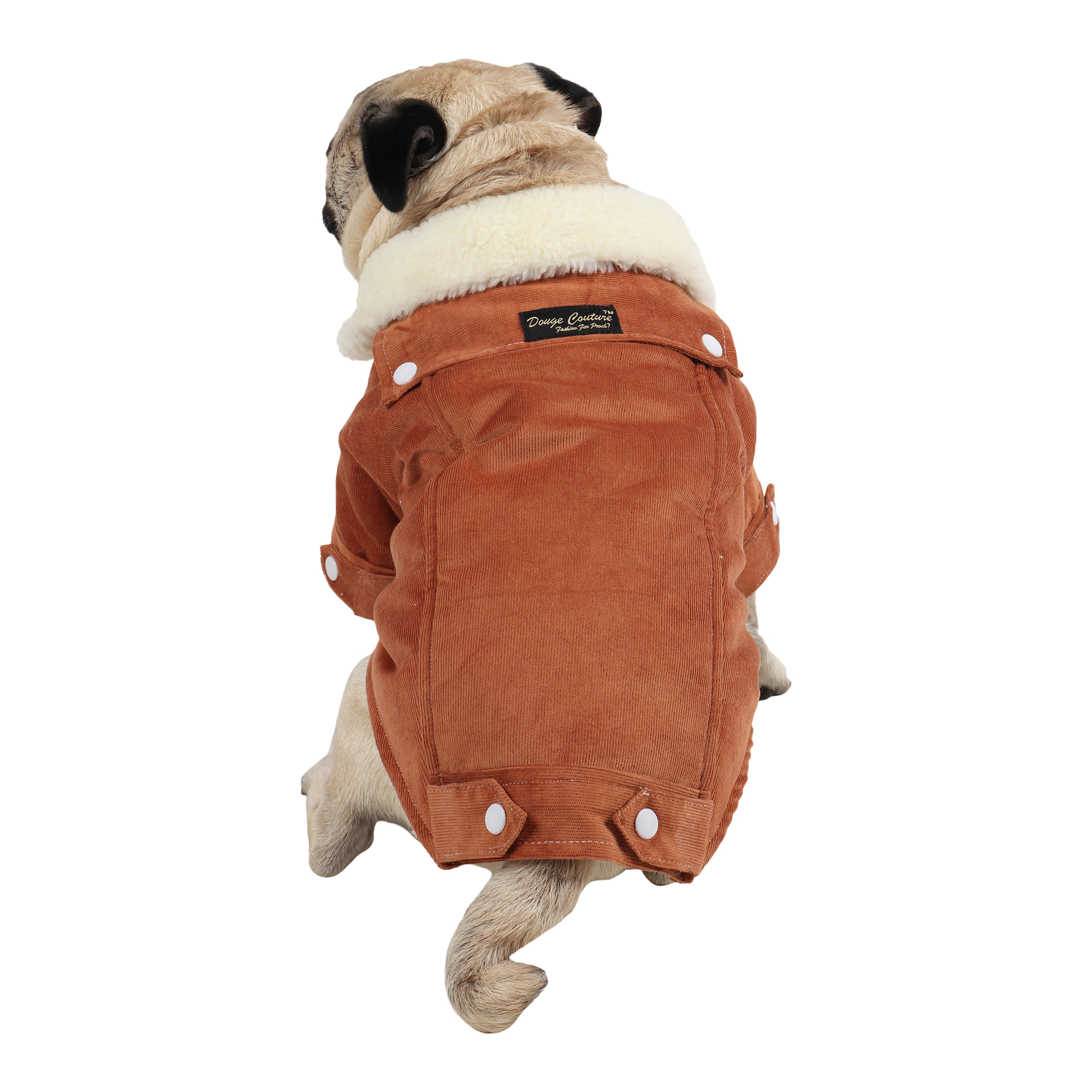 Douge Couture winter warm corduroy jackt for all dogs for cold weather (brown)