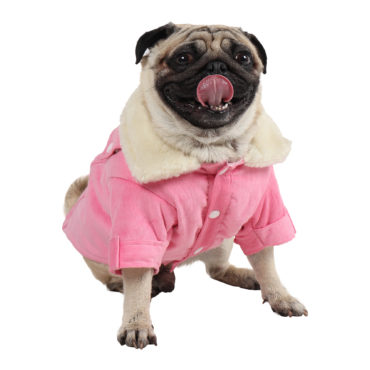 Dog Clothes (winter warm corduroy jacket for dogs (light pink))