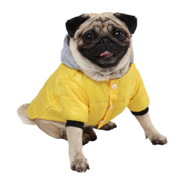 DOG CLOTHES (WARM WINTER JACKET (YELLOW)