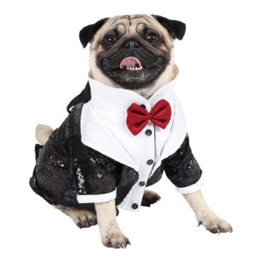 DOUGE COUTURE Elegant Glamour Party Tuxedo for Dogs (Black) 1