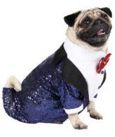 Dog Tuxedo (Glamour Party Tuxedo for Dogs (navy blue))