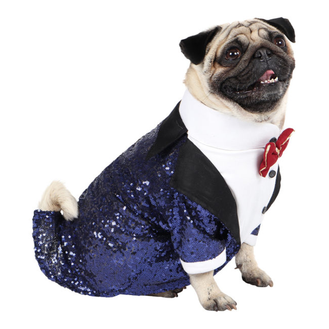 Dog Tuxedo (Glamour Party Tuxedo for Dogs (navy blue))