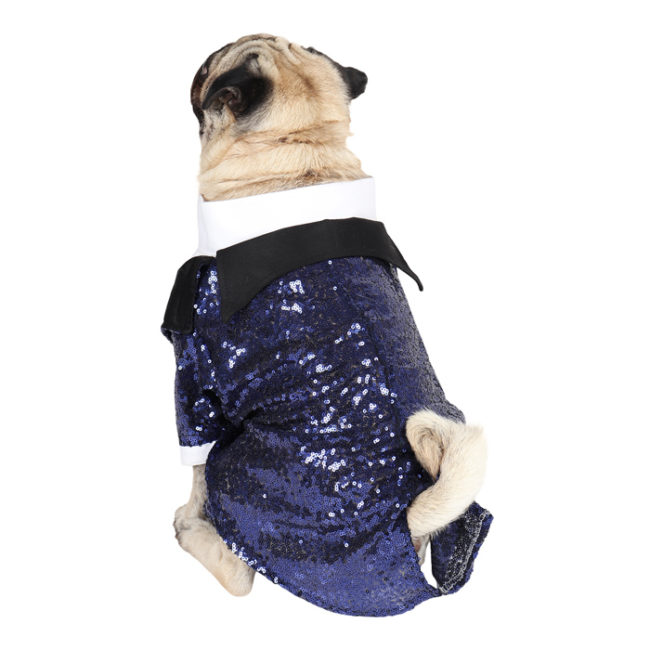 DOUGE COUTURE Elegant Glamour Party Tuxedo for Dogs (navy blue)