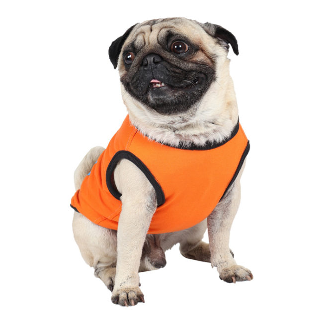 douge couture free hugs printed orange colour cotton summer T-Shirt