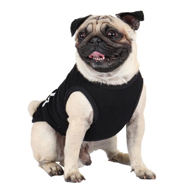 douge couture free hugs printed black colour cotton summer T-Shirt
