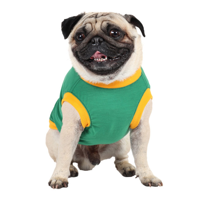douge couture don't be fooled by my size printed green colour cotton summer T-Shirt