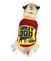 Dog Clothes (crazy dog printed maroon color cotton summer T-Shirt)