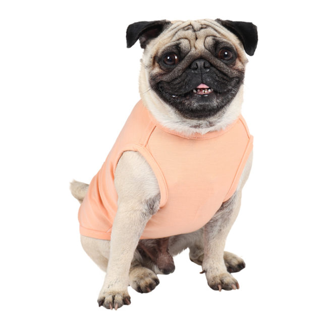 douge couture dogbaby peach colour printed cotton T-Shirt