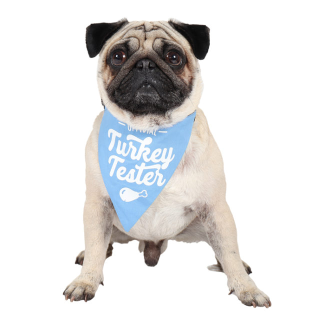 douge couture printed official turkey tester bandana (sm-ml sizes)