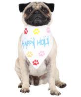douge couture cool happy holi festive bandanas