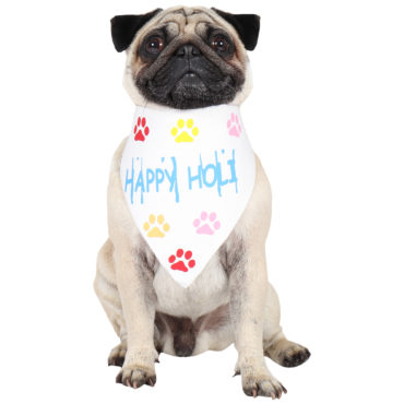 douge couture cool happy  holi festive bandanas 1